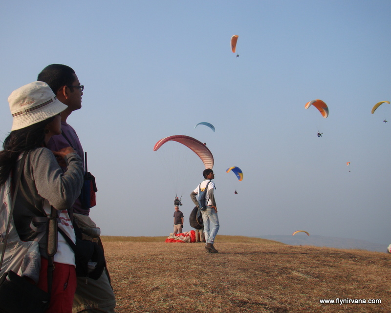 Watching paragliding