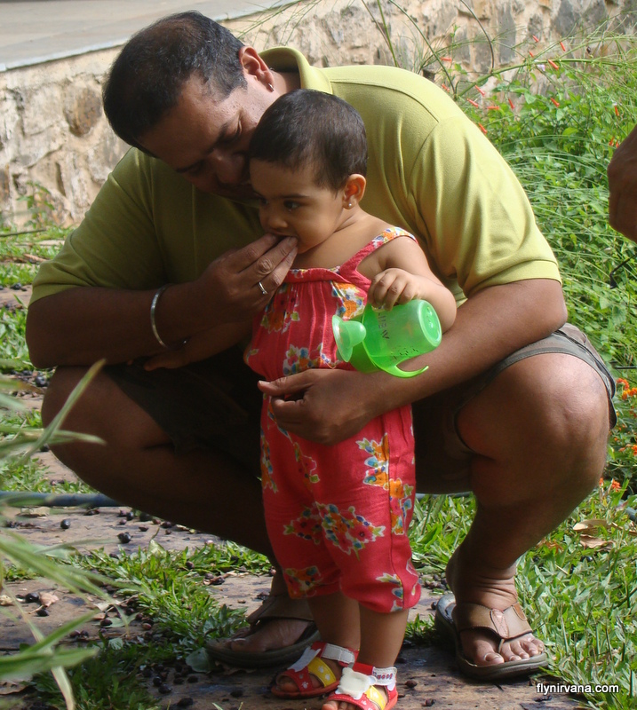 Papa Anand feeds baby  Kyra her first hand picked organic unpackaged fruit