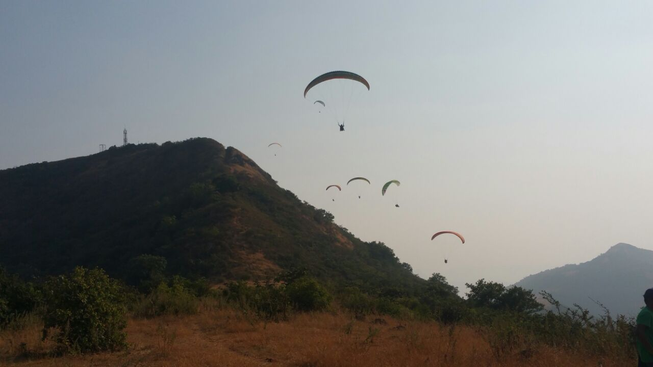Paragliding at Tower HIll